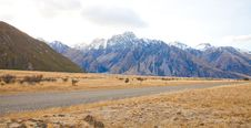 Free Aoraki Mount Cook New Zealand Royalty Free Stock Photography - 25872747