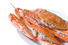 Free Steamed  Crab On Dish Royalty Free Stock Images - 25876619