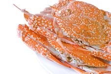 Free Steamed  Crab On Dish Stock Image - 25876671