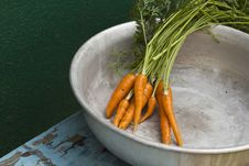 Free Young Carrots With Leaves In Metallic Bowl Stock Photo - 25885700