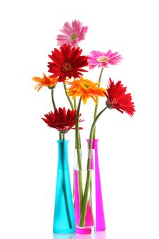 Free Colorful Gerbers Flowers Stock Photo - 25893120