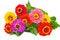Free Bouquet Zínnia. Royalty Free Stock Photo - 25892445