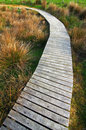 Free Wooden Path Royalty Free Stock Photo - 2593185