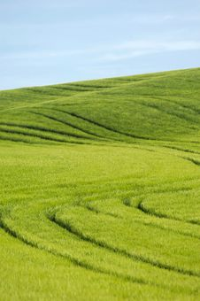 Free Green Hill And Blue Sky Stock Photo - 2591860