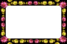 Free Floral Frame Stock Photo - 2593010