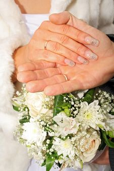 Free Wedding Hands Royalty Free Stock Photos - 2597528