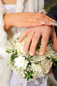 Free Wedding Hands Stock Image - 2597541