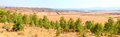 Free View On Agricultural Fields Stock Images - 25909544