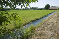 Free Field And Water Channel Stock Photos - 25903213