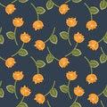 Free Orange Flowers Royalty Free Stock Images - 25913679