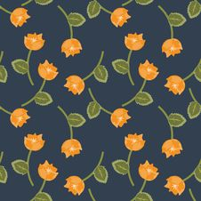 Free Orange Flowers Royalty Free Stock Images - 25913679