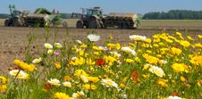 Free Field Of Wild Flowers With Farm Tractor Royalty Free Stock Photography - 25915337