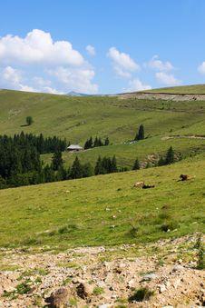 Free Scenery From Transalpina Stock Image - 25919251