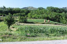 Free Hillside Rural Landscape Stock Image - 25919321