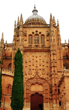 Free Southern Gate Salamanca Cathedral Stock Photography - 25919772