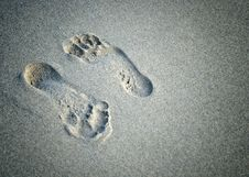 Free A Pair Of Foot Prints Royalty Free Stock Images - 25925939