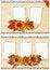 Free Autumn Frames Set Royalty Free Stock Photography - 25920437