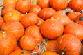Free Pumpkins For Sale Stock Image - 25939691