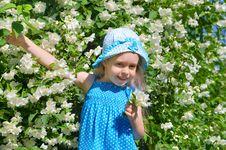 Free Happy Child Royalty Free Stock Photo - 25931755