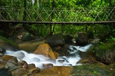 Free Bridge Over The Waterfall Stock Image - 25938991