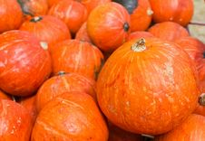 Free Pumpkins For Sale Stock Images - 25939674