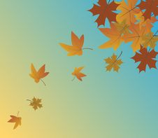 Free Autumn Leaves Stock Images - 25943984