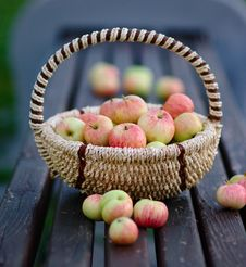 Free Apples In The Basket Royalty Free Stock Photos - 25945078