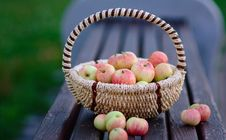 Free Apples In The Basket Stock Photography - 25945082