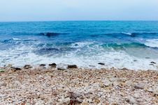 Free Landscape With The Sea Royalty Free Stock Images - 25947389