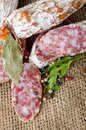 Free Salami And Spices Stock Photos - 25952763