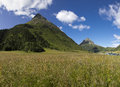 Free Green Summer Alps Meadow Stock Photography - 25953022