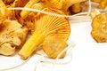 Free Fresh Raw Chanterelle Mushrooms Stock Photos - 25962483