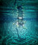 Free Underwater Stock Image - 25966841
