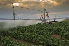 Free Pivoting Irrigation System Stock Photo - 25977410