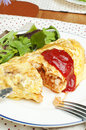 Free Omelet With Rice Stock Photography - 25984842