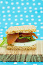 Free Cracker Sandwich With Smoked Salmon Royalty Free Stock Photos - 25984968
