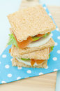 Free Cracker Sandwich With Smoked Salmon Royalty Free Stock Photos - 25985058