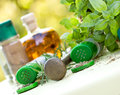 Free Fresh And Dry Herbs - Spices Royalty Free Stock Images - 25988699