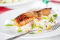 Free Salmon And Salad Stock Images - 25989334