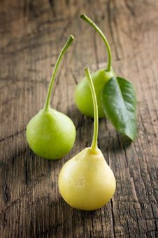 Free Pears Stock Images - 25980484