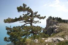 Free Mountain Crimea In Ukraine Stock Image - 25981621