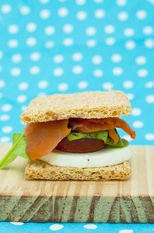Free Cracker Sandwich With Smoked Salmon Royalty Free Stock Photos - 25984968
