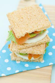 Free Cracker Sandwich With Smoked Salmon Royalty Free Stock Photos - 25985058