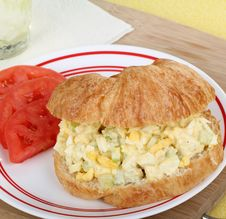 Free Egg Salad Sandwich Royalty Free Stock Images - 25988689