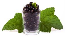 Free A Glass Of Blackcurrant Stock Photos - 25990733