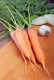 Free Fresh Carrots Stock Image - 25993521