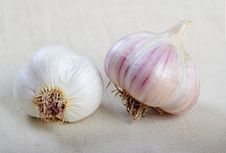 Free Garlic Stock Photo - 25993560