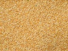 Free Dried Yellow Peas Royalty Free Stock Photo - 25999565