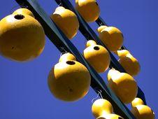 Free Peach Display Stock Photos - 260353