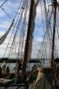 Free Man On Sail Ship Royalty Free Stock Images - 2608819
